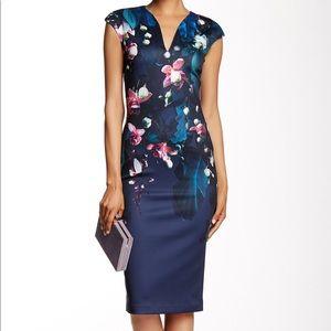 Ted baker Antonya dress size 0 xsmall